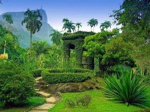 Jardim Botanico in Rio De Janeiro, Brazil- 14 best gardens worldwide by Conde Naste
