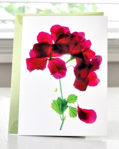 Cards from Green Ink Gallery by Julia McLemore