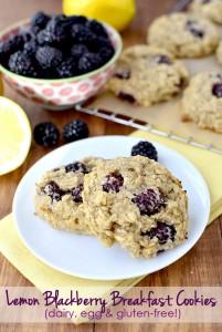 Iowa Girl Eats- Lemon Blackberry breakfast cookies
